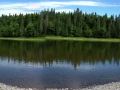 Pine Island (3)